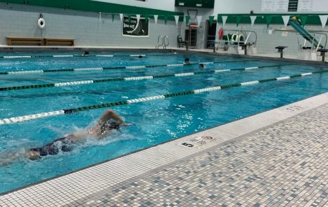 A Feature on Lake Shore's Boys Varsity Swim Team